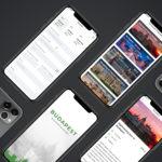A multiplatform mobile app, designed for tour and transfer booking